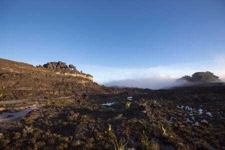 volcanic stones: Landscape at the top of Mount Roraima in the morning with blue sky. Black volcanic stones, water and endemic plants. Gran Sabana. Venezuela 2015.