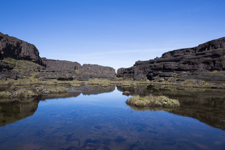 stones in water: Landscape at the top of Mount Roraima in the morning with blue sky. Black volcanic stones, water and endemic plants. Gran Sabana. Venezuela 2015.
