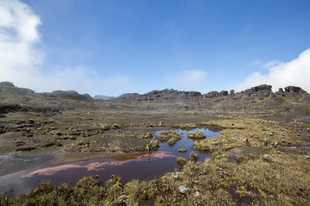 strange mountain: Wild landscape at the top of Mount Roraima with clouds early in the morning. Gran Sabana.  Stock Photo