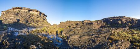 stones in water: Panorama at the top of Mount Roraima in the morning with blue sky. Black volcanic stones, water and endemic plants. Gran Sabana. Venezuela 2015.