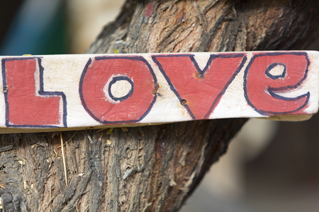 hooked: White and red rustic wooden love sign hooked on a tree in Punta Sal, Peru