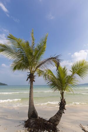 south east asia: Quiet empty paradise beach in Koh Rong island near Sihanoukville Cambodia. South East Asia