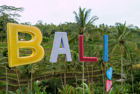 tegalalang: Sign Bali with rice fields terraces in the background near Ubud in Bali. Indonesia