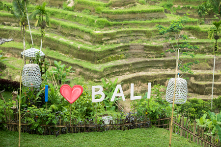 tegalalang: Sign I Love Bali with rice fields terraces in the background near Ubud in Bali. Indonesia
