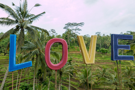 tegalalang: Sign I Love with rice fields terraces in the background near Ubud in Bali. Indonesia