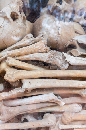 genocide: Group of skulls and bones found in various Killing fields during the genocide by Pol Pot, Phnom Penh, Cambodia
