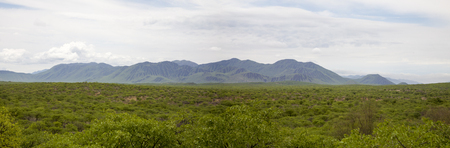 africa baobab tree: Panorama of the Zebra Mountains in the north of Namibia, within the Kunene region.