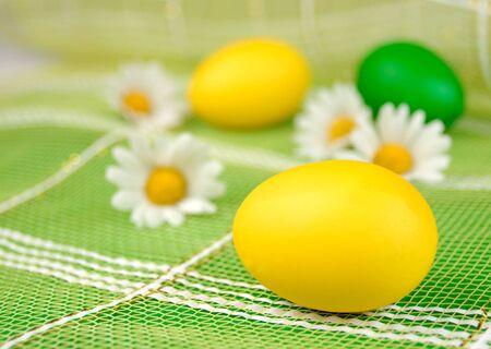 Yellow and green easter eggs with chamomiles over green background photo