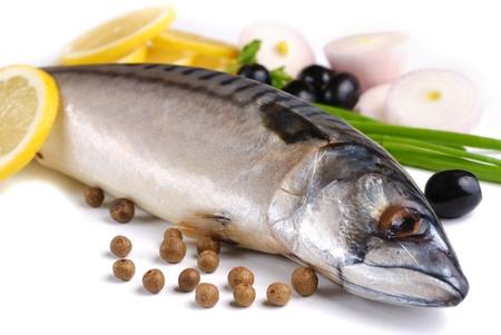 mackerel: Fresh mackerel with olives and onions over white background