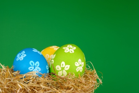 Easter painted eggs in the nest over green background photo