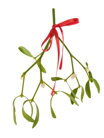 Mistletoe twig with red ribbon isolated over white background