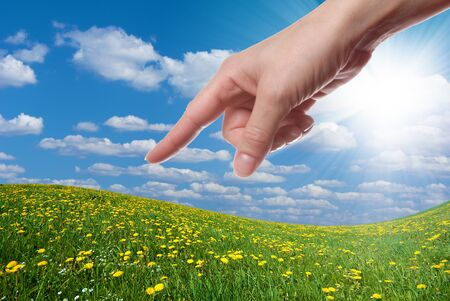 Finger pointing at dandelion field Stock Photo - 9291334