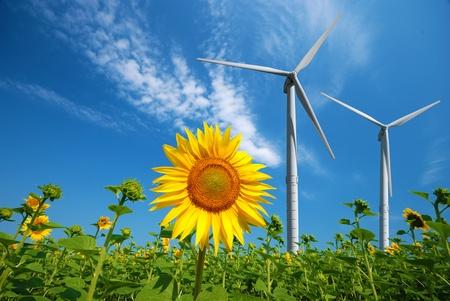 energia eolica: Turbinas de viento bajo cielo nublado azul