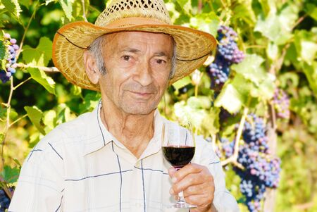 Senior smiling viticulturist holds wineglass photo