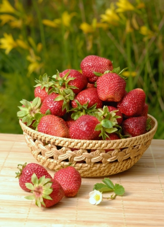 Fresh organic strawberries closeup shot photo