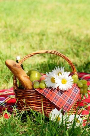 Picnic basket with red napkin fool of fruits, bread and wine on green grass with copy-space