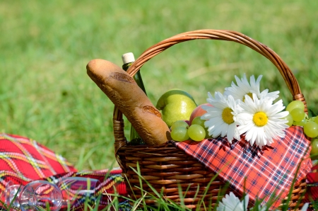 Picnic basket with red napkin fool of fruits, bread and wine on green grass