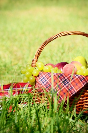 picnic blanket: Picnic basket with red napkin fool of fruits, bread and wine Stock Photo