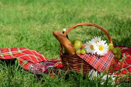 canasta de panes: Cesta de picnic con tonto servilleta roja de frutas, pan y vino