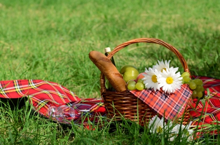 bread basket: Picnic basket with red napkin fool of fruits, bread and wine Stock Photo