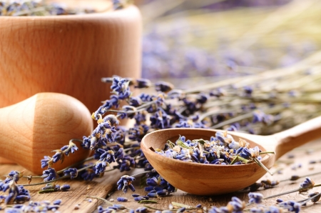 Pestle and mortar with lavender flowers on the oak table  Stock Photo