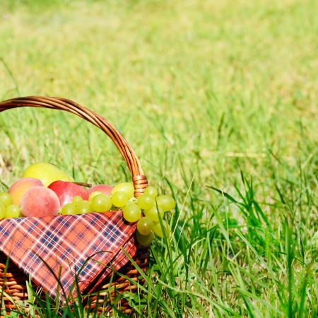 Picnic basket with red napkin fool of fruits photo