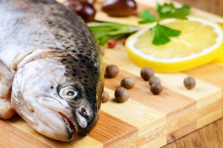Raw trout on the chopping board with lemon and spices Stock Photo - 19150648