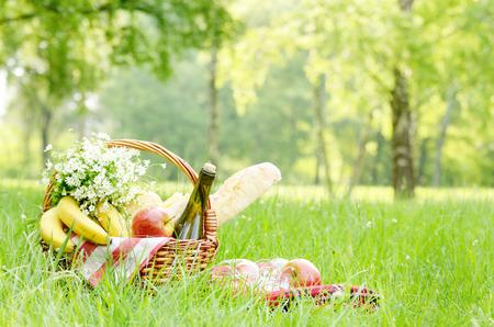 bread and wine: Cesta de picnic con queso manzanas los pl�tanos y el vino en la hierba verde