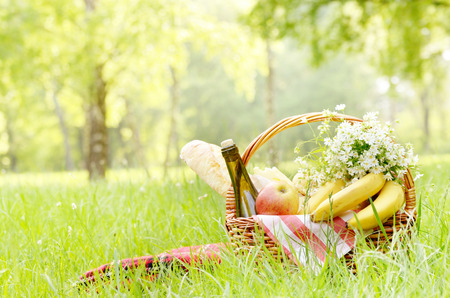 flowers summer: Picnic basket with apples bananas cheese and wine on green grass