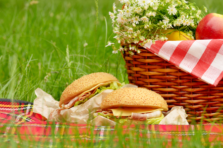 baskets: Picnic basket with apples bananas and sandwiches Stock Photo