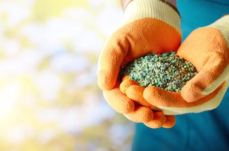 Granjero muestra fertilizantes en sus manos lució guantes Foto de archivo - 89139903