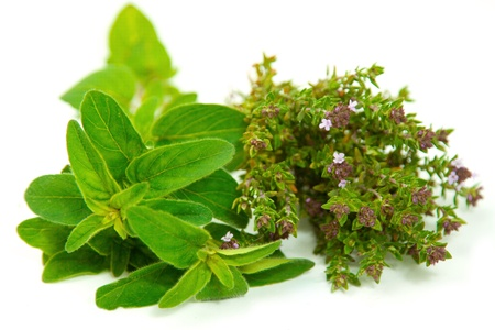 Fresh herbs straight from the garden, ready to be used in the kitchen  Isolated against white background  photo