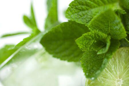 acqua di seltz: Una bevanda rinfrescante alla menta estate, lime, ghiaccio, acqua soda