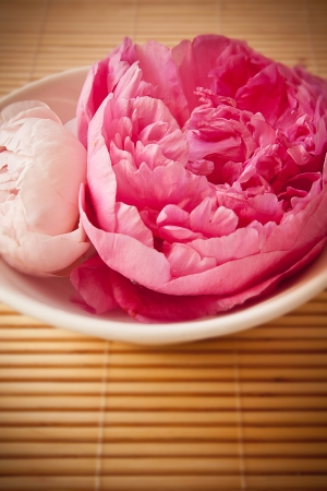 A bowl full of beautiful pink aromatherapy flowers  Spa scene  photo