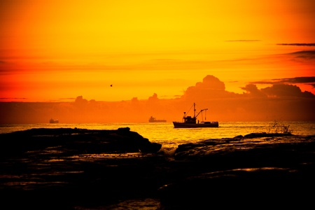 A fishing boat cruises by the shore at dawn in Wollongong, NSW, Australia photo