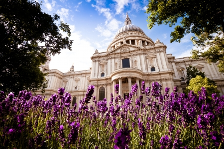 st paul s cathedral: St Paul s cathedral in spring  Landscape  Stock Photo