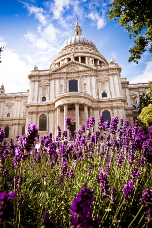 st  paul   s cathedral: St Paul s cathedral in the spring  Portrait  Stock Photo