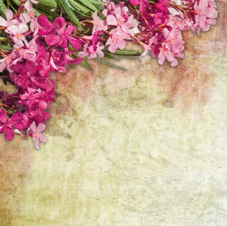 Vintage illustration of oleander flowers frame  Distressed treatment for a retro feel  Combination of hand-drawn material and photographs