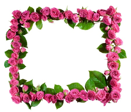Frame made of beautiful pink roses and blossoms, isolated on white  Great as a greetings card, for a love message, for a wedding and so on  Standard-Bild