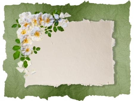 hart bloem: Vintage rose frame op distressed papier achtergrond met ruimte voor een bericht Geweldig als wenskaart, voor een liefde bericht en ga zo maar door Veel copyspace Stockfoto