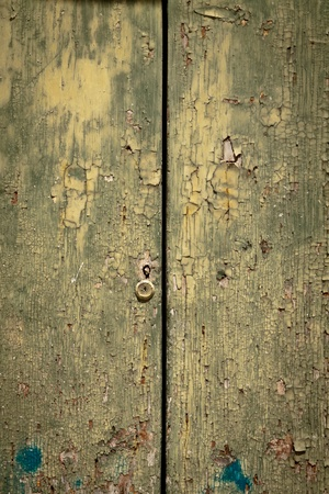 Detail of green weathered old door with peeling paint  photo