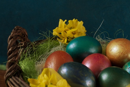 middle easter: Basket of decorated Easter eggs with yellow forsythia flowers, against a blue background  Focus on the blue egg in the middle ground  Stock Photo