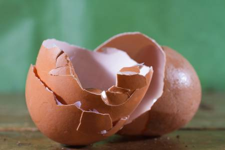 cracked egg: Cracked and empty shell of an egg after its been broken.