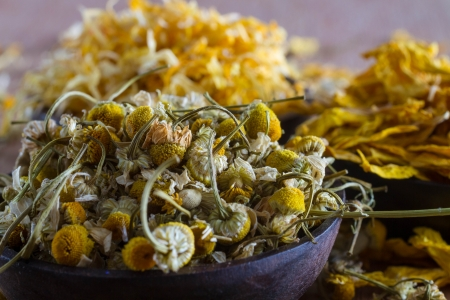 Dried  chamomile buds, with marigold and sunflower petals in the background: for herbal tea, alternative medicine, pot-pourri.