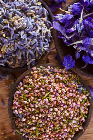 medicinal plants: Dried flower petals: scented lavender, heather and larkspur. Copy space. Stock Photo