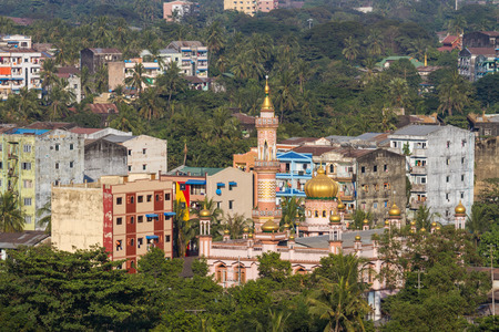 cusp: Urban jungle. a cityscape of Yangon with old buildings, a mosque and lots of palm trees and greenery.