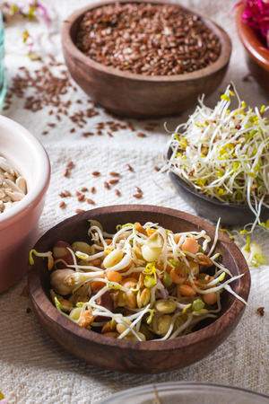 sprouts: Colourful and healthy crunchy mixed seeds and various sprouts. Focus on bean sprouts, with alfalfa, sunflower seeds, linseed and beet sprouts in the background.