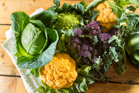 Cornucopia of vegetables from the brassicaceae family: yellow cauliflower, purple sprouting broccoli, cabbage, Romanesco cauliflower with its beautiful fractal shapes. Stock Photo