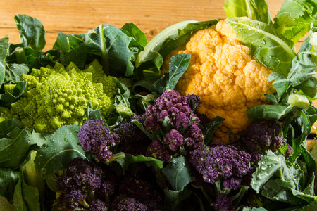cruciferous: Cornucopia of vegetables from the brassicaceae family: yellow cauliflower, purple sprouting broccoli, cabbage leaves, Romanesco cauliflower with its beautiful fractal shapes.
