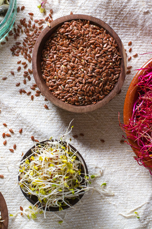 seeds of various: Colourful and healthy crunchy mixed seeds and various sprouts. Linseed, alfalfa, red beet sprouts.